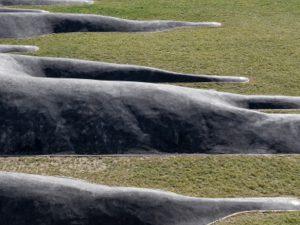 L'enfance du pli / Sculpture-paysage // Meyrin, Suisse /// 2017
